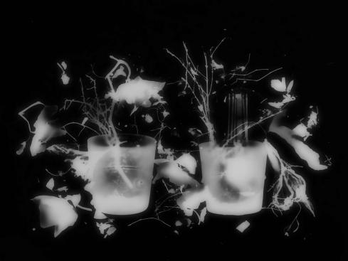 Blumenladen3_christine_pirker